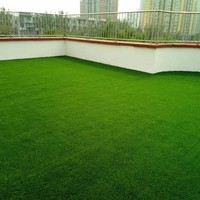 Green turf landscape grass carpet