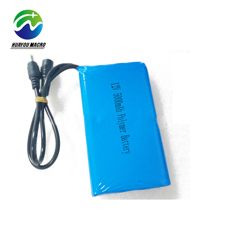 Rechargeable Lipo Polymer 12V 5Ah 5000Mah Li Ion Lithium Li-Ion Battery Pack