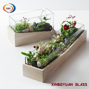 Glass Plant Vase Terrarium With Wood Base Buy Glass Terrarium