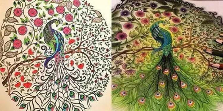 Büyülü Orman Sayfaları Yetişkin Renklendirme Kitapları Buy Boyama