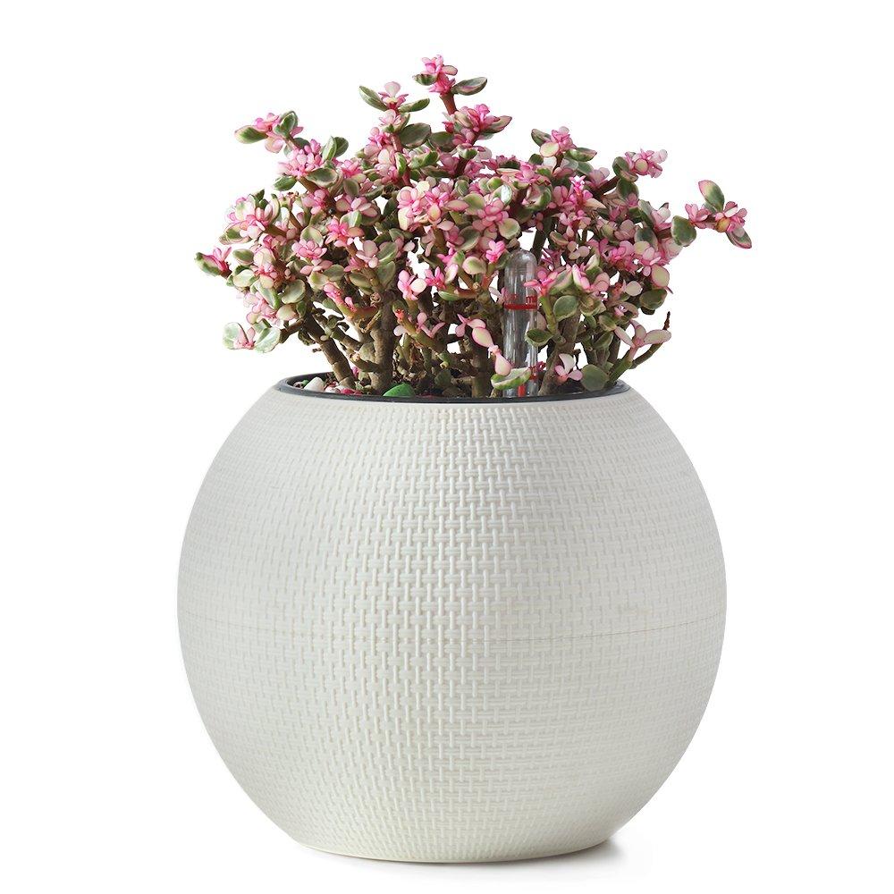 Cheap Tree Planter Pot Find Tree Planter Pot Deals On Line At