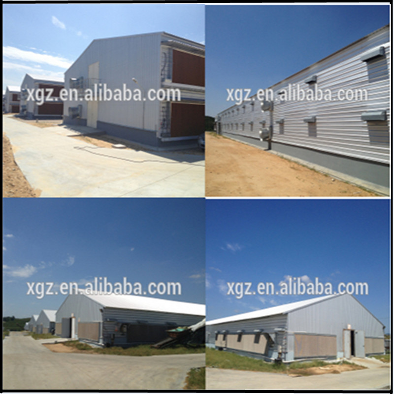 Poultry farm house chicken structure