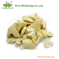 Manufacturer Directly Supply Bulk Cocoa Butter With Low Price