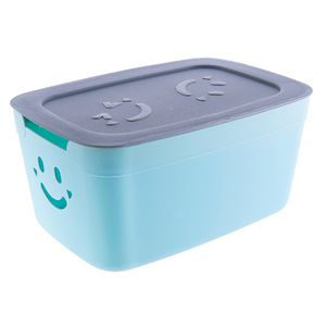 Hot sale colorful rectangle shape home 7 L PP plastic storage box with lid kitchen storage