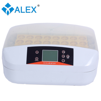 Good Quality 32 Eggs Automatic Mini Poultry Egg Incubator For Sale Sri  Lanka - Buy Poultry Egg Incubator,Poultry Egg Incubator For Sale,Mini Egg