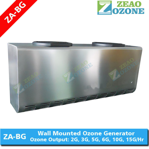 Longevity portable 2 grams ozone generator water sterilizer for spa water disinfection