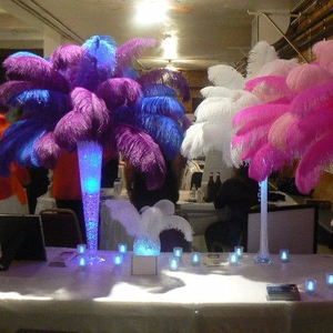 white ostrich feathers for wedding centerpieces