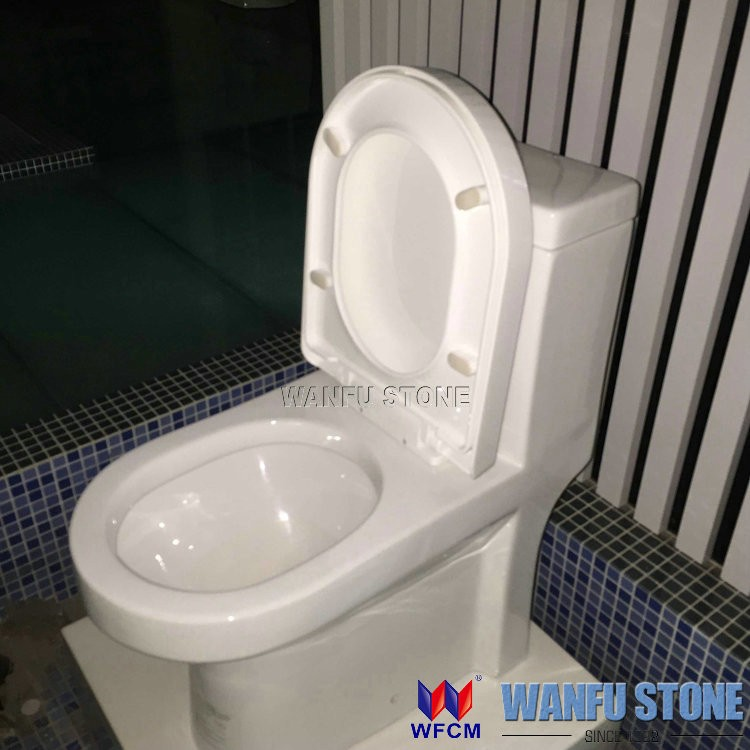 ceramic wc toilet white color floor-mounted wc spy toilet cam