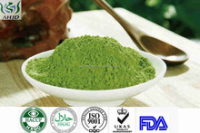 China Products Superfoods Dried Green Barley Powder Grass Barley Powder For Health Products