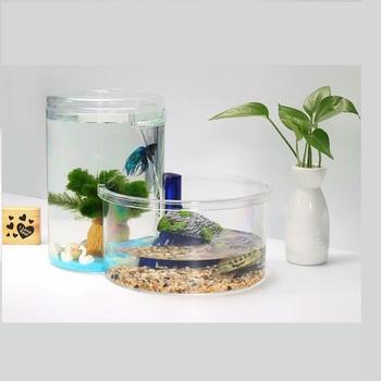 Aquarium Coffee Table.Pet Products Aquarium Coffee Table Fish Tank For Thailand Betta Fish Buy Fish Betta Thailand Betta Fish Pet Products Product On Alibaba Com