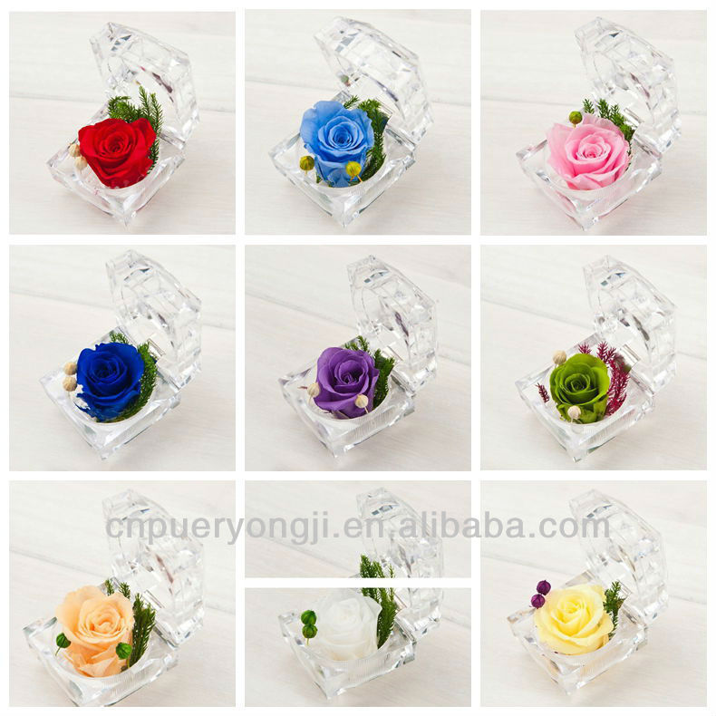 Wholesale Hand-made Preserved Rose Flower In Ring-shape Glass Box