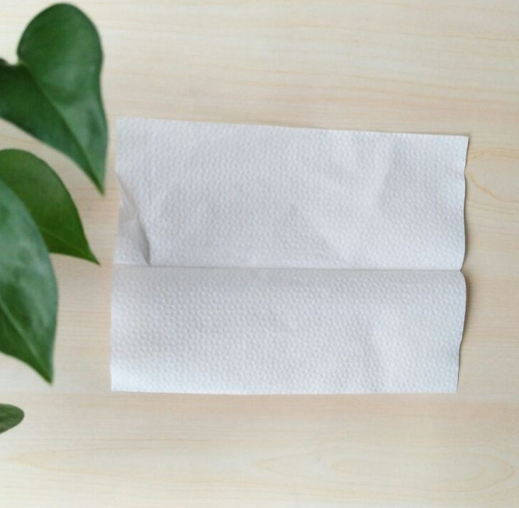 23 26cm 1ply Single Fold Other Sanitary Biodegradable