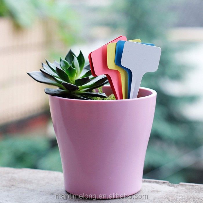 100Pcs 10*6cm T-type Plastic Garden Gardening Label Horticultural Tallies Enhanced Re-usable Succulent Plant Flower Tag Colorful