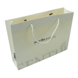Custom Design Printed Logo Promotional Luxury Folding Paper Bag for Shopping/Gift/Paper Gift Bag