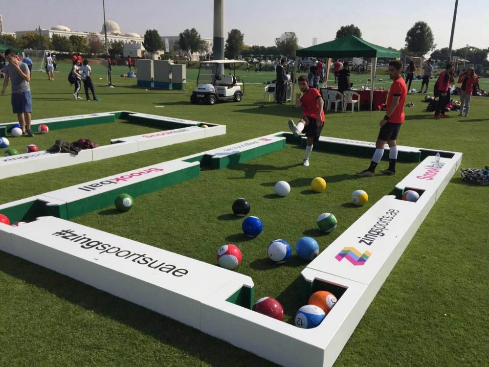 snookball table ADS-SN01 (41)