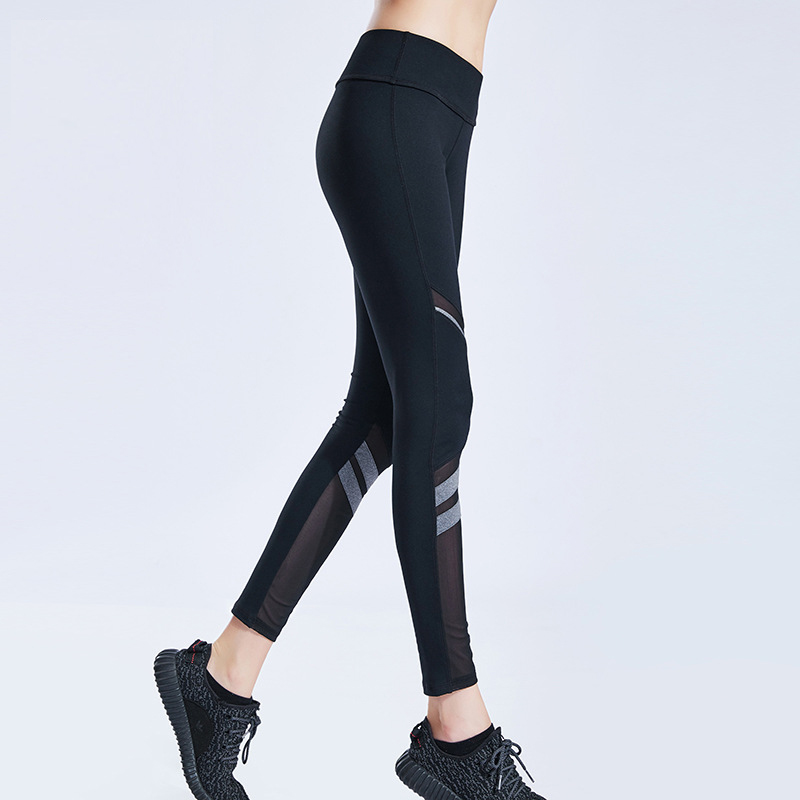 Wholesale custom shark dropshiping gym women shark clothing joggers fitness leggings sports pants
