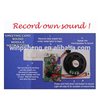 re-recordable sound modules