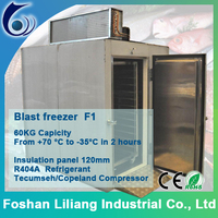 Reach in blast freezer industrail freezer
