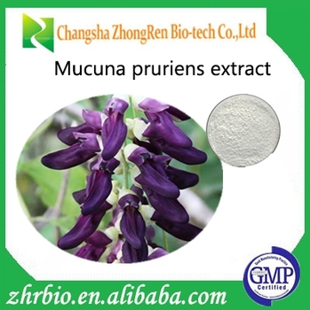 Natural Sex Products Herb extract Mucuna Pruriens Extract 98% L-dopa CAS NO.CAS NO.:59-92-7