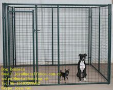 Powder coated finish all welded 6 / 8 gauge wire dog kennels