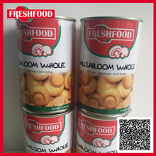 Competitive Price For Good Market Canned Slice Mushroom Canned Food Factory In China