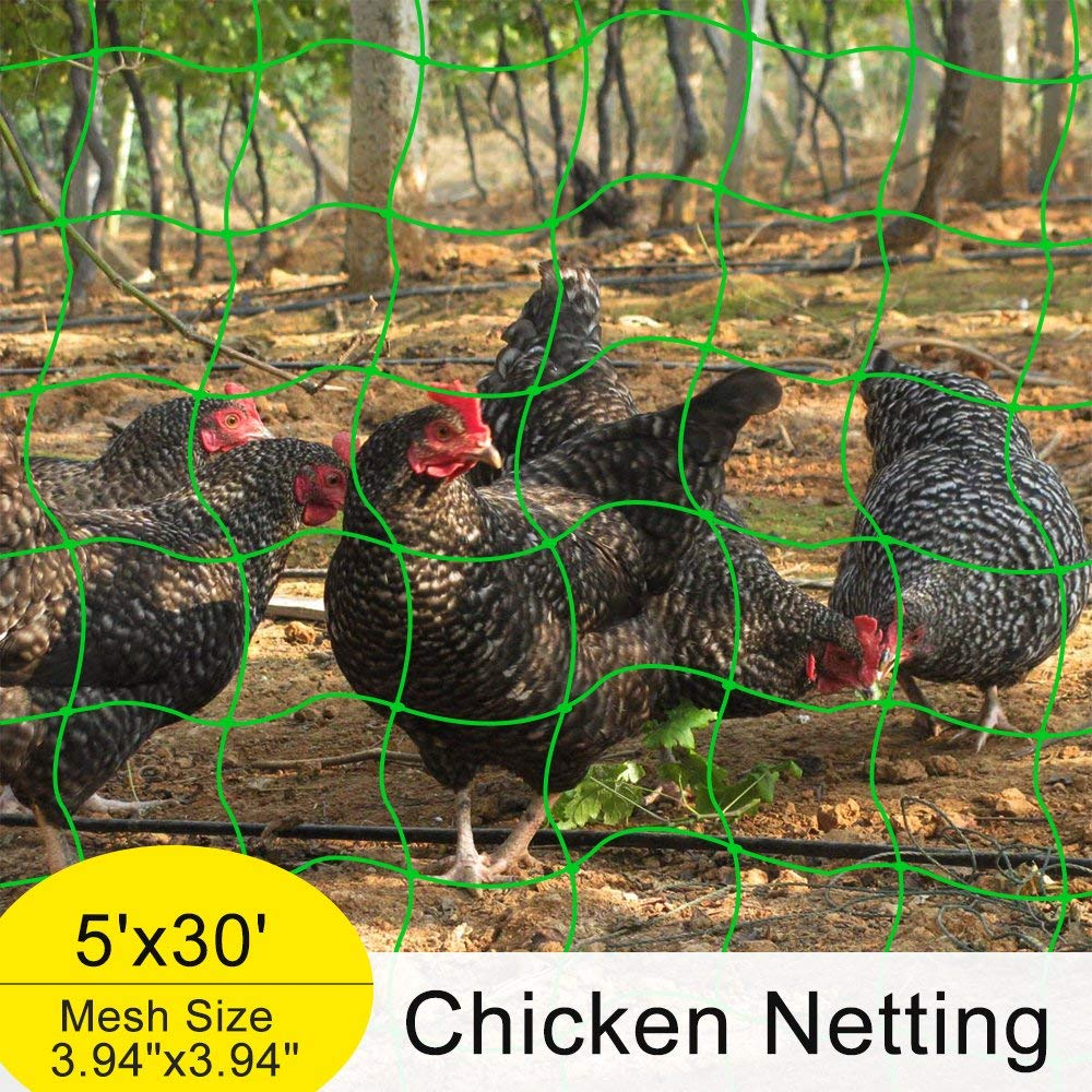 "Mr.Garden Heavy-duty PE Plant Trellis Netting Green Garden Netting,Chicken Netting,Poultry Fence, 3.94""-36 W5'xL30'"