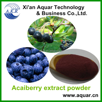 Acai berry frozen / Acai berry brazil export / Acai berry powder