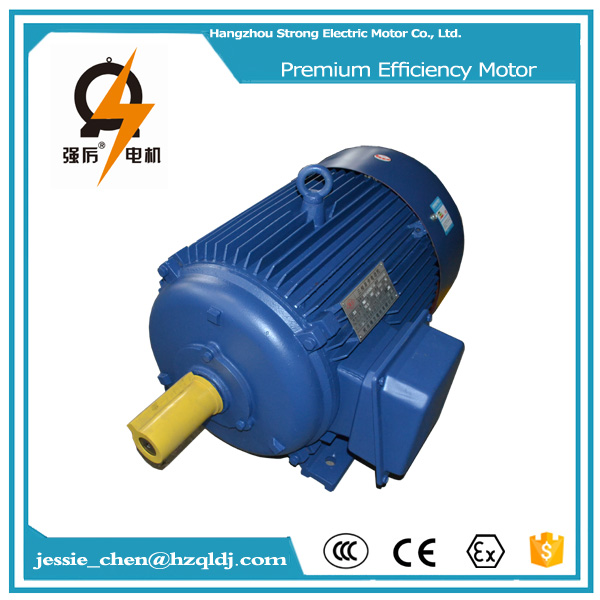 4000 rpm 200 kw induction electric motor supply