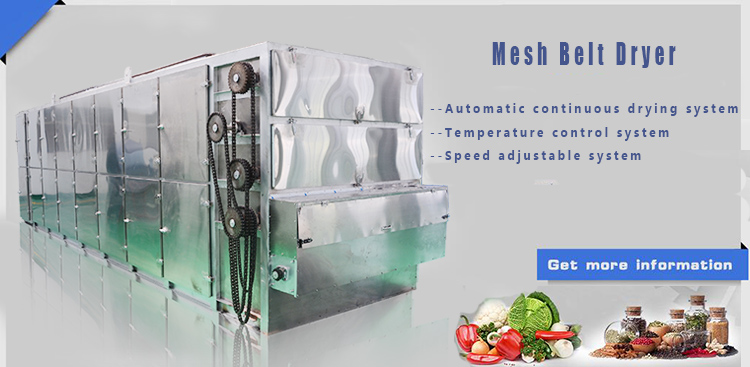 Best Drying Quality Dehydration Lyophilizer Vegetable Vacuum Freeze Dryer