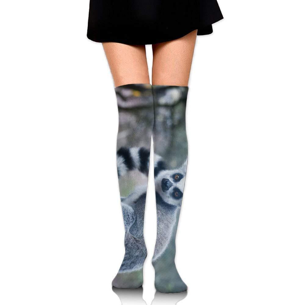 f4189e3db5e Get Quotations · RobotDayUpUP Animals Lemur Womens Long Socks