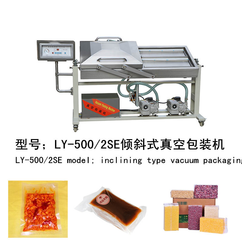 DZ(Q)-400/2SB Automatic food vacuum sealer