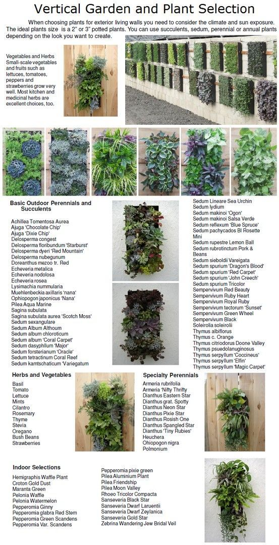 China Supplier Bonsai Pots Vertical Garden Modular Hydroponic ...
