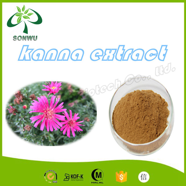 High Quality Kanna Extract/kanna Sceletium Tortuosum - Buy Kanna,Kanna  Extract,Kanna Sceletium Tortuosum Product on Alibaba com