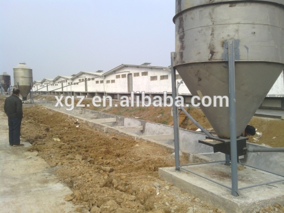 Low Price High Quality Advanced Automated Pig Farm Construction