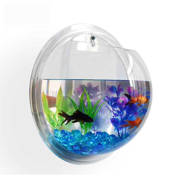 Winkelen Custom Acryl Plastic Woondecoratie Plant Pot Wandmontage Opknoping Bubble Acryl Kom Aquarium Aquarium