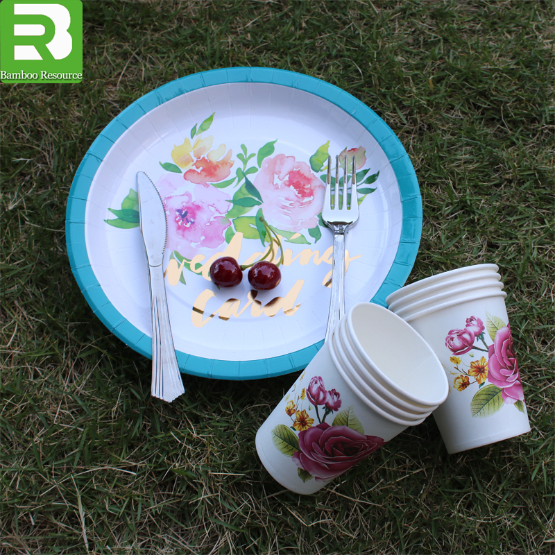 Japanese Paper Plates Japanese Paper Plates Suppliers and Manufacturers at Alibaba.com & Japanese Paper Plates Japanese Paper Plates Suppliers and ...