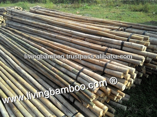 TAM VONG BAMBOO POLE