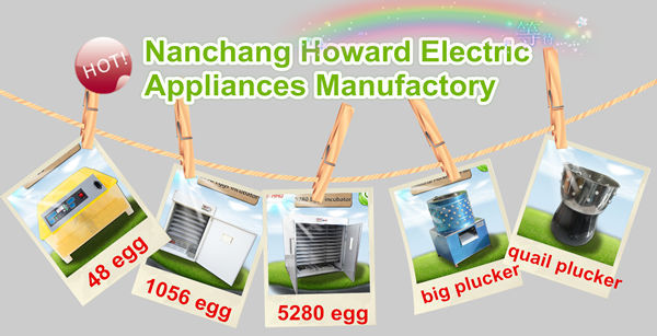 HHD best 880 chicken egg  hatching machine industrial incubator price with 3 years warranty YZITE-10