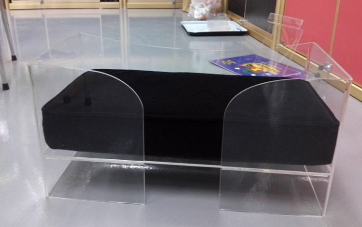 new premium acrylic manufacturer in shenzhen clear acrylic pet bed for cat dog pet items