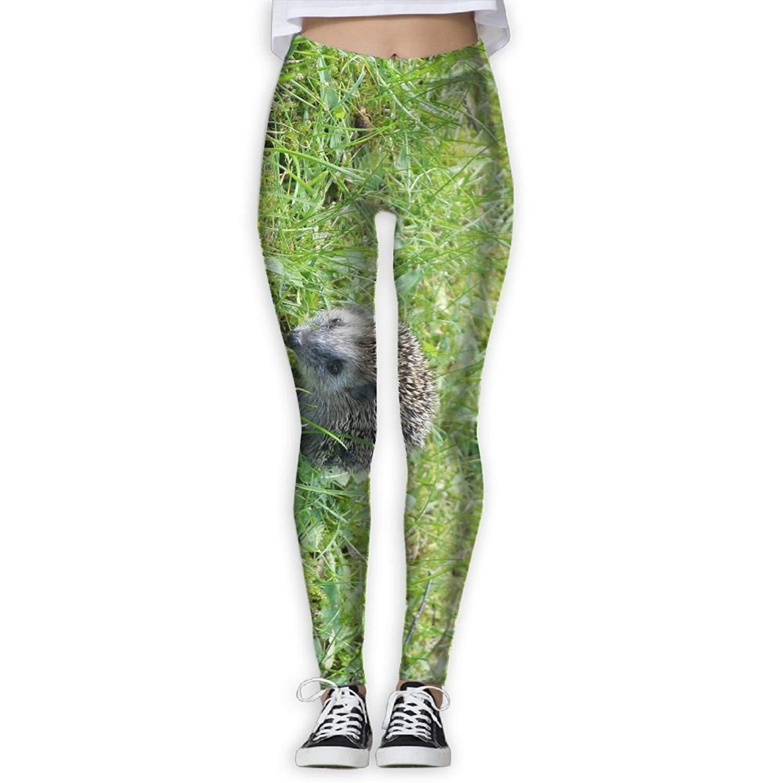 EWDVqqq Women Yoga Pant Hedgehog High Waist Fitness Workout Leggings Pants