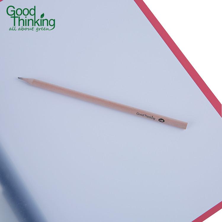 PP Stationery Supplier Punchless Filing Folder,Custom A4 PP Report Cover Eco Filing Folder