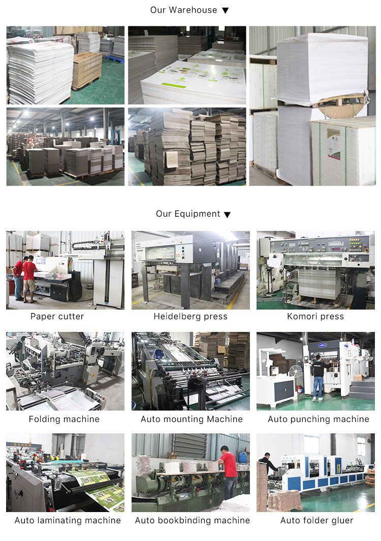 China companies low price digital printing press brochure booklet flyers printing service