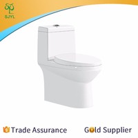 Standard combined toilet and bidet