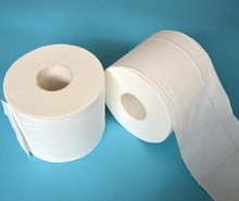 Good Quality Printed Private Label Tissue roll Toilet Paper