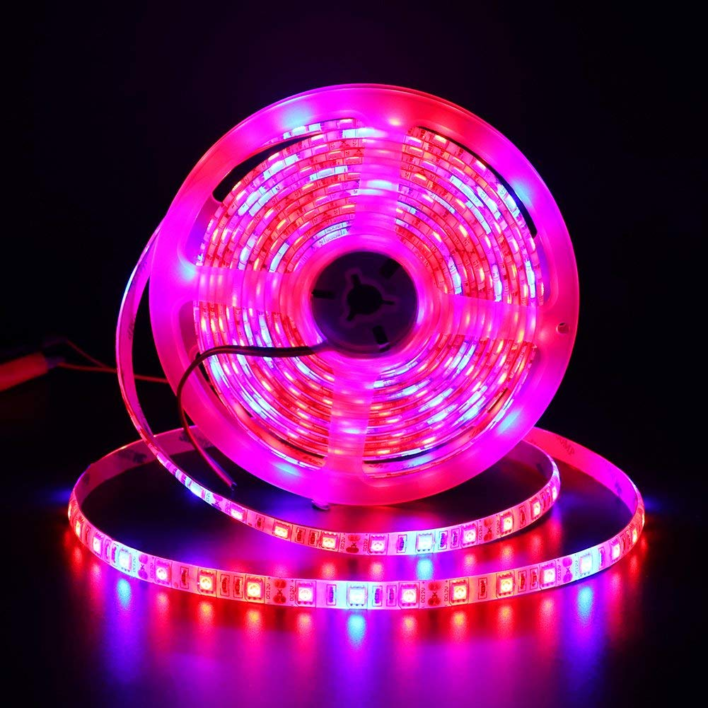 XUNATA 16.4ft LED Plant Grow Strip Light, SMD 5050 Waterproof Full Spectrum Red Blue 4:1 Rope Strip Grow Light for Greenhouse Hydroponic Plant, 12V (Tube Waterproof IP67, 4 Red:1 Blue)