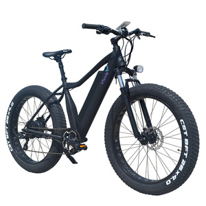 Electric bike adult 500w 48v