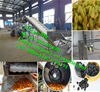 raisin processing equipment/raisin machine/automatic raisin cleaning machinery