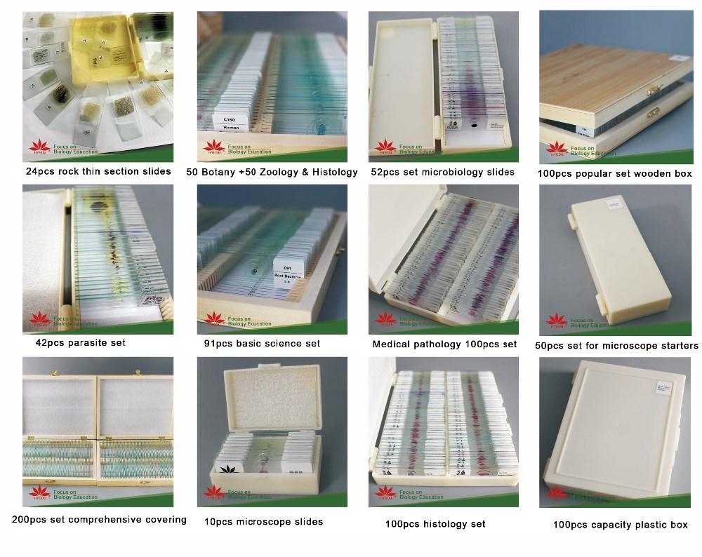 Fixed Items Types Of Zoology Common Animal Anatomy Tissue Slides