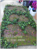 artificial grass plant wall / fake moss plant wall for home decorative