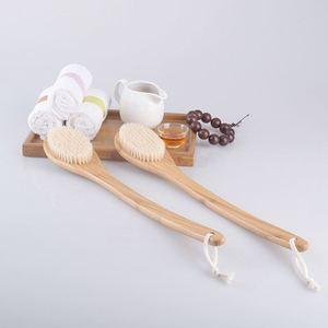 New product Exfoliating Long Handle Cactus Body bath Brush, detachable extention hook bath brush